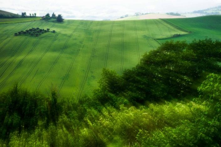 fotografia e paesaggi, castello di loretello ad arcevia